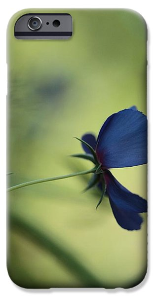 Mystifying iPhone Cases - Flight Of The Lobelia  iPhone Case by Connie Handscomb