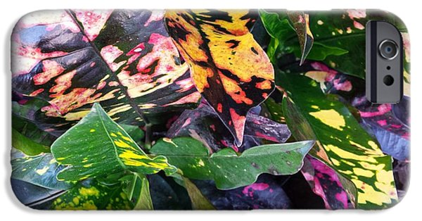 Multimedia iPhone Cases - Floral Colors iPhone Case by Ann Hamlin