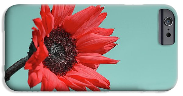 Floral Photographs iPhone Cases - Floral Energy iPhone Case by Aimelle