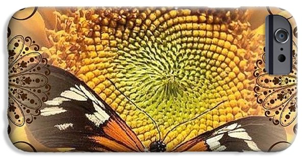 Catherine White Digital iPhone Cases - Floral Framed Brown Butterfly iPhone Case by Catherine Lott