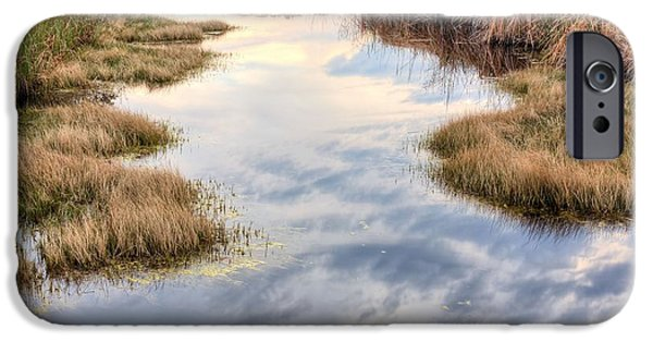 Florida Panhandle iPhone Cases - Flordia Wetlands iPhone Case by JC Findley