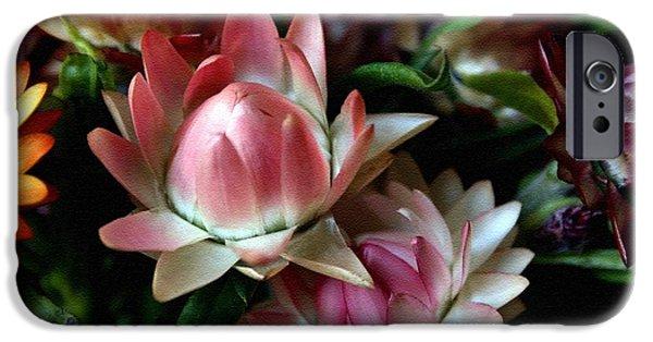 Business Pastels iPhone Cases - Florina in Flower Land H b iPhone Case by Gert J Rheeders