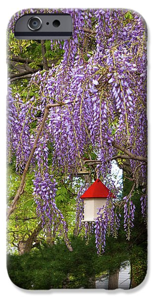 Flower - Wisteria - A house of my own iPhone Case by Mike Savad
