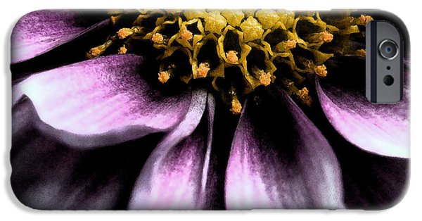 Close Up Mixed Media iPhone Cases - Flower iPhone Case by Andre Giovina