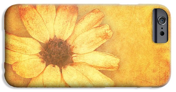 Flora Mixed Media iPhone Cases - Flower Art iPhone Case by Angela Doelling AD DESIGN Photo and PhotoArt