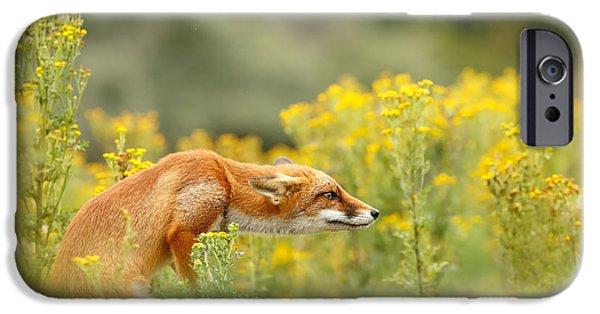 Floral Photographs iPhone Cases - Flower Fox iPhone Case by Roeselien Raimond