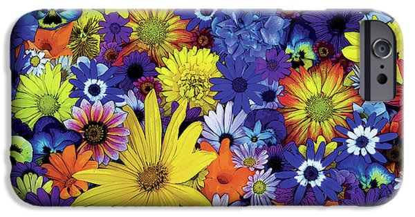 Plant iPhone Cases - Flower Garden 1 iPhone Case by JQ Licensing