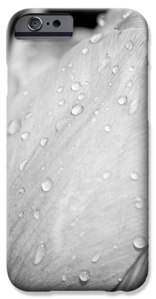 Sheets iPhone Cases - Flower In Drops iPhone Case by Konstantin Sevostyanov