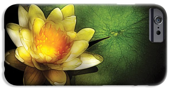 Nymphaea iPhone Cases - Flower - Lotus - Nymphaea  Chromatella - Yellow Lily iPhone Case by Mike Savad