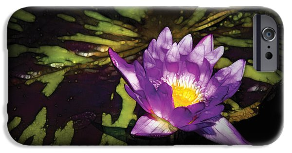 Nymphaea iPhone Cases - Flower - Lotus - Nymphaea - Pleasant Day iPhone Case by Mike Savad