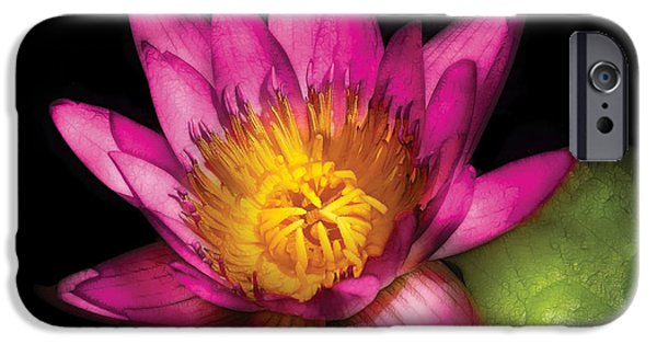 Nymphaea iPhone Cases - Flower - Lotus - Nymphaea  Ruby - Passion iPhone Case by Mike Savad