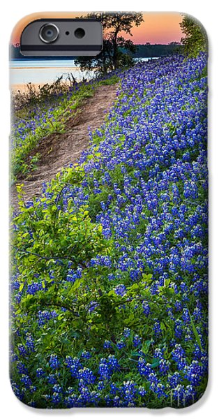 Mounds iPhone Cases - Flower Mound iPhone Case by Inge Johnsson