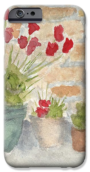 Flower Pots iPhone Case by Ken Powers