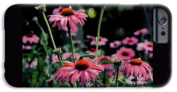 Floral Photographs iPhone Cases - Flower Power iPhone Case by Tom Prendergast