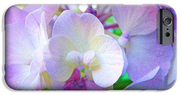 Purple Hydrangea iPhone Cases - FLOWERS HYDRANGEAS Art Prints Floral Garden Baslee Troutman iPhone Case by Baslee Troutman