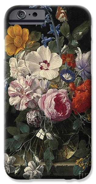 Ledge iPhone Cases - Flowers in a glass vase butterfly and beetle on a stone ledge iPhone Case by Celestial Images