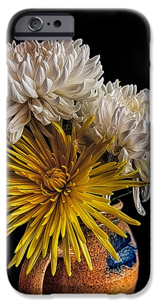 Flower Of Life iPhone Cases - Flowers in a Teapot #2 iPhone Case by Rick Barnard