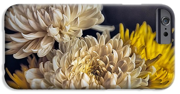 Flower Of Life iPhone Cases - Flowers in a Teapot #3 iPhone Case by Rick Barnard