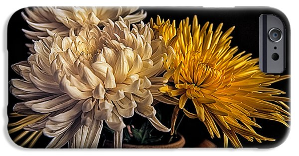 Flower Of Life iPhone Cases - Flowers in a Teapot #4 iPhone Case by Rick Barnard