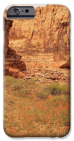 Slickrock iPhone Cases - Flowers in the Canyon iPhone Case by Tonya Hance