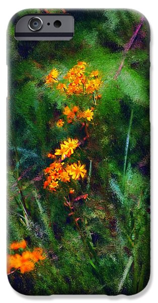 Photo Manipulation Digital Art iPhone Cases - Flowers in the Woods at the Haciendia iPhone Case by David Lane