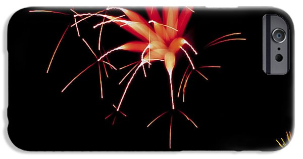 Fourth Of July iPhone Cases - Flowerworks #10 iPhone Case by Sandy Swanson