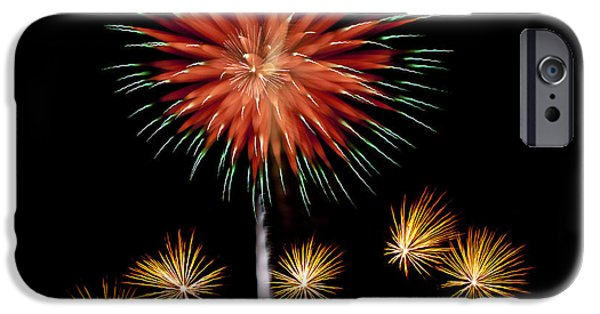 Fourth Of July iPhone Cases - Flowerworks #9 iPhone Case by Sandy Swanson
