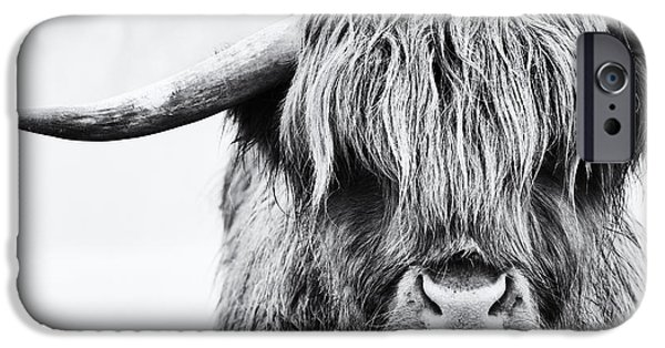 Agricultural iPhone Cases - Fluffys Mate iPhone Case by Tim Gainey
