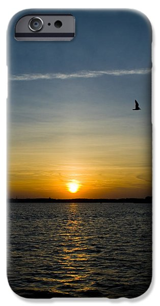 Flying Seagull iPhone Cases - Flying Across the Sun iPhone Case by Breanna Mead