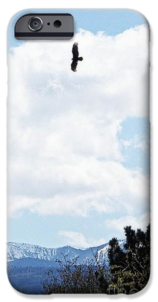 Tree Art Print iPhone Cases - Flying High iPhone Case by Bobbee Rickard