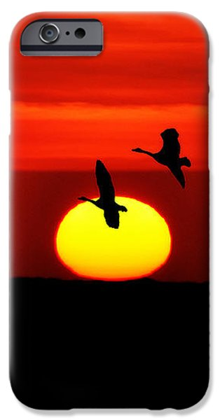 Flying North at Sunrise iPhone Case by Bill Cannon