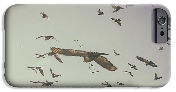Freedom iPhone Cases - Flying iPhone Case by Patricia Hofmeester