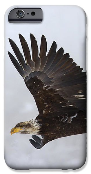 Foggy Flight iPhone Case by Mike  Dawson