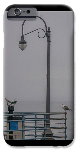 Seagull iPhone Cases - Foggy Morning iPhone Case by Ernie Echols