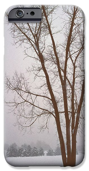 Wintry Mixed Media iPhone Cases - Foggy Morning Landscape 13 iPhone Case by Steve Ohlsen