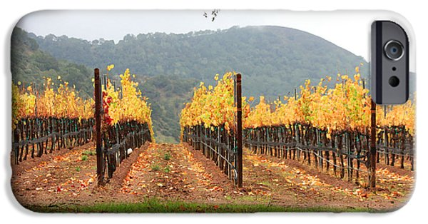 Agricultural iPhone Cases - Foggy Vineyard iPhone Case by Art Block Collections