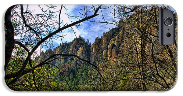 Oak Creek iPhone Cases - Foilage of Sedona Arizona iPhone Case by Jon Berghoff