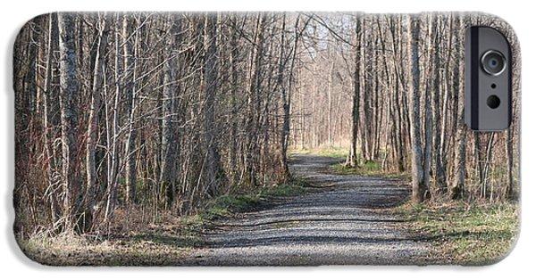 Pathway iPhone Cases - Follow the path... iPhone Case by Betty-Anne McDonald