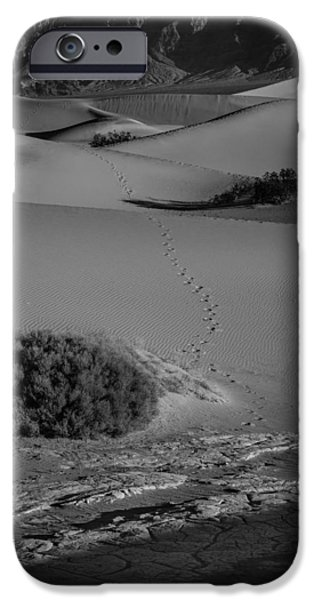 Sand Dunes Pyrography iPhone Cases - Footsteps into the Desert iPhone Case by Rick Strobaugh