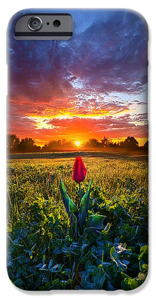 Meadow Photographs iPhone Cases - For Your Love iPhone Case by Phil Koch