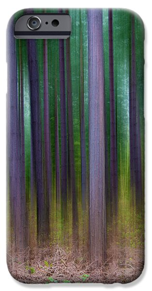 Forest Abstract02 iPhone Case by Svetlana Sewell