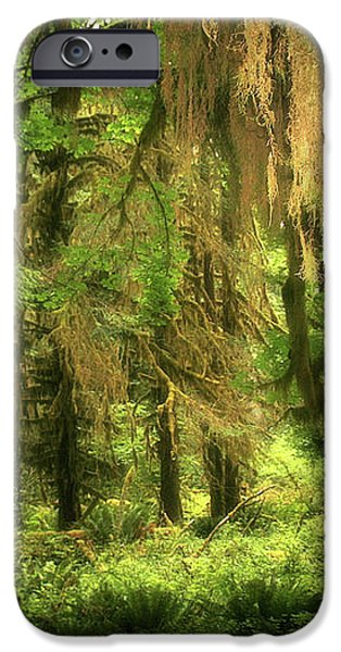 Forest Fantasy - Quinault - Gateway to Paradise on the Olympic Peninsula WA iPhone Case by Christine Till