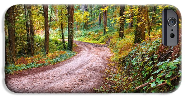 Fall Scenes iPhone Cases - Forest Footpath iPhone Case by Carlos Caetano