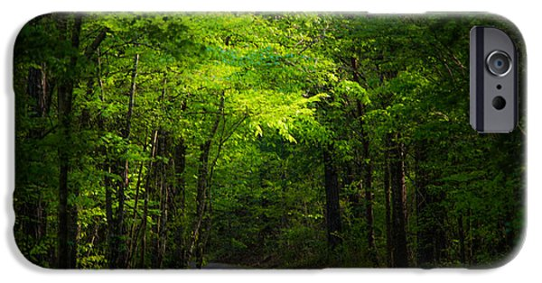Green Path iPhone Cases - Forest Path iPhone Case by Parker Cunningham