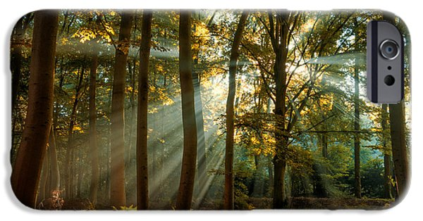 Fall iPhone Cases - Hidden Secrets iPhone Case by Martin Podt