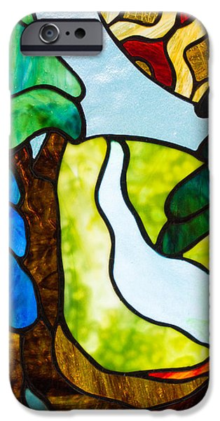 Forest Glass iPhone Cases - Forest Walk iPhone Case by Tina Marohn