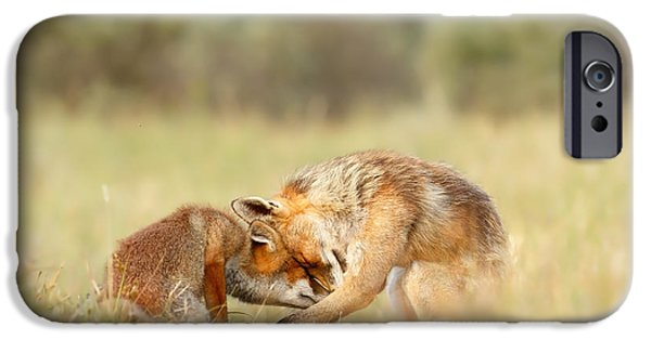 Juveniles iPhone Cases - Foreverandeverandever - Red Fox Love iPhone Case by Roeselien Raimond