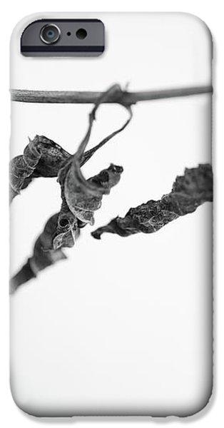 Forgotten iPhone Case by Gabriela Insuratelu
