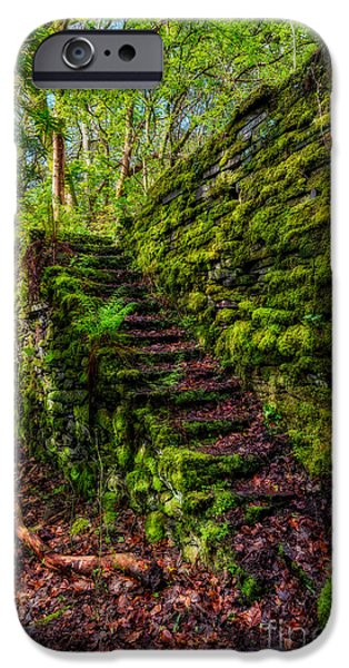 Stone Steps iPhone Cases - Forgotten Steps iPhone Case by Adrian Evans