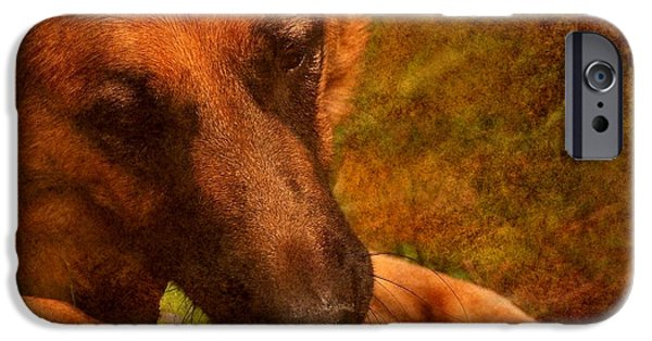 Dog And Tennis Ball iPhone Cases - Forrest And The Tennis Ball iPhone Case by Angie Tirado